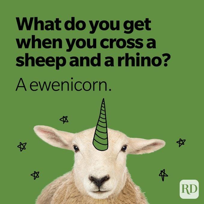 what do you get when you cross a sheep and a rhino? a ewenicorn.