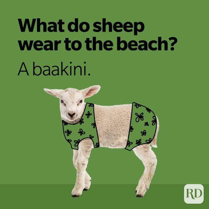 what do sheep wear to the beach? a baa-kini