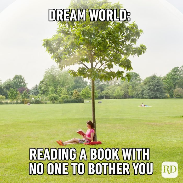 Dream World Reading A Book With No One To Bother You