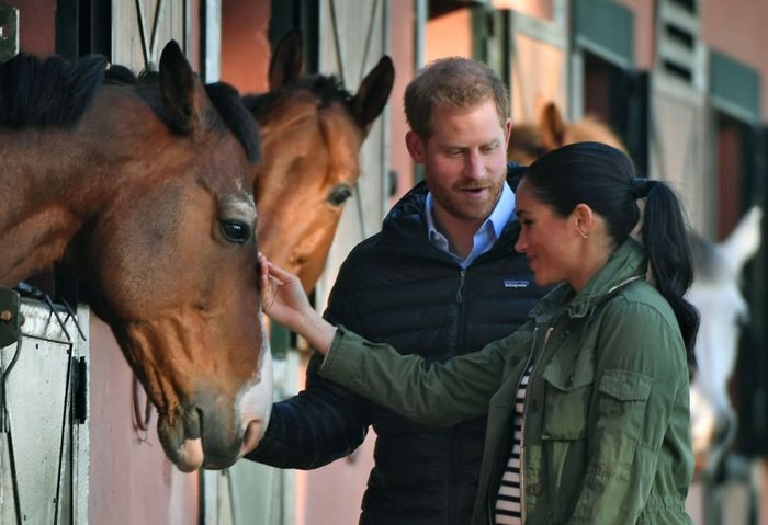 Prince Harry and his wife Meghan, Duke & Duchess of Sussex, pet a horse at the Moroccan Royal Federation of Equestrian Sports in Rabat on February 25, 2019