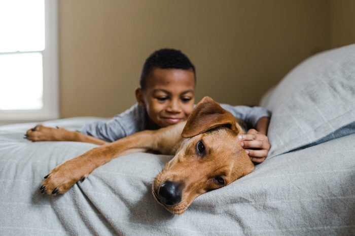 young boy with his rescue dog