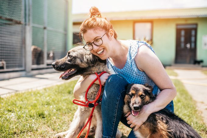 Young adult woman working and playing with mixed breed dogs in animal shelter