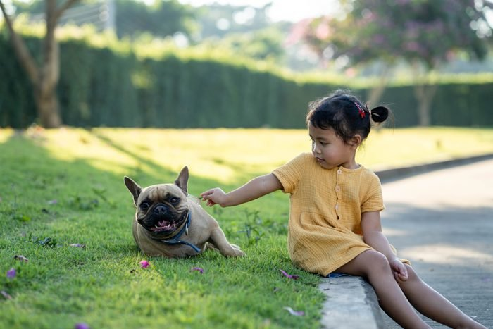 young girl sitting with french bulldog