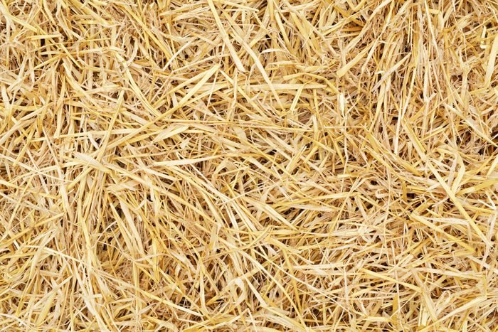 close up of hay full frame