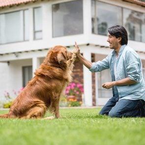 Man training his golden retriever in his backyard