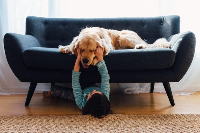 child playing with her golden retriever dog