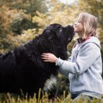25 Giant Dog Breeds That Make the Best Pets