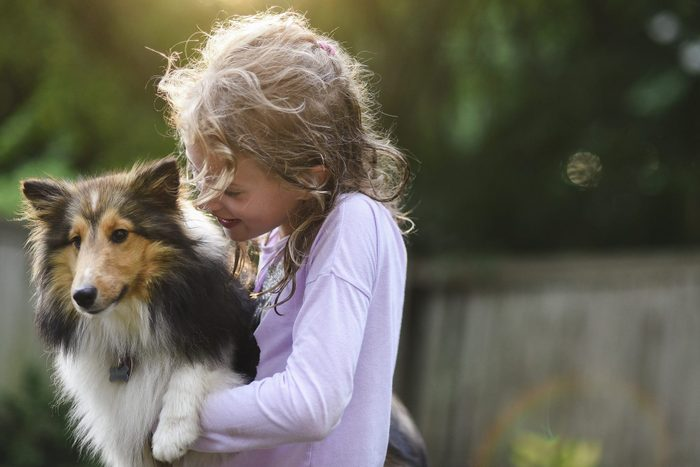 Girl playing with collie dog at park