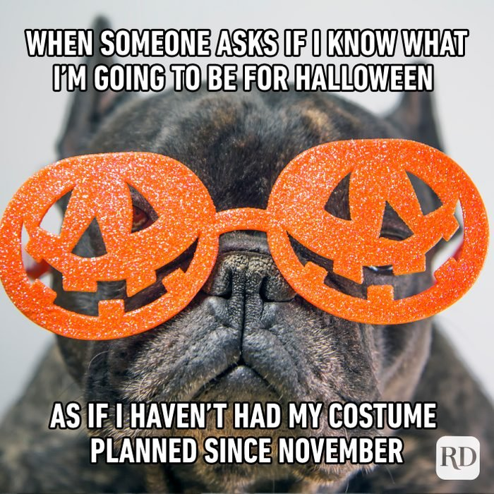 When Someone Asks If I Know What I'm Going To Be For Halloween As If I Haven't Had My Costume Planned Since Last November