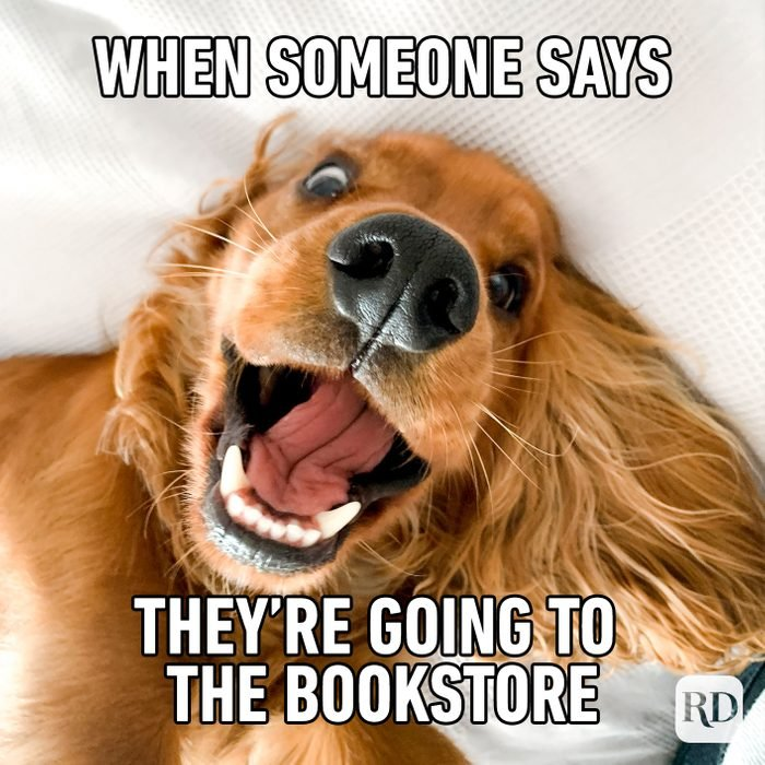 When Someone Says Their Going To The Bookstore