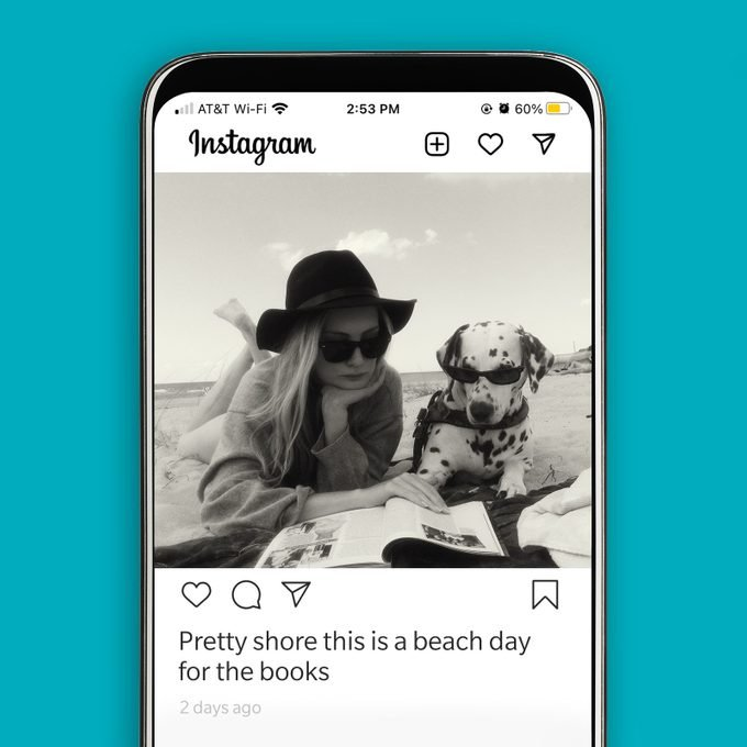 instagram screenshot displaying a woman and her Dalmatian reading at the beach