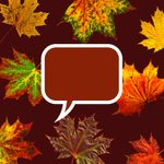 50 Fall Quotes All Autumn Lovers Will Enjoy