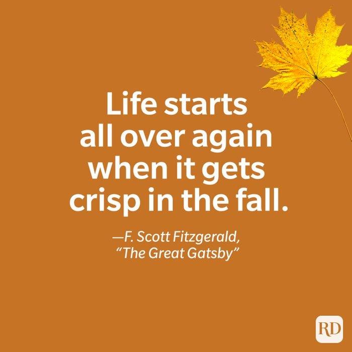 F. Scott Fitzgerald, The Great Gatsby quote