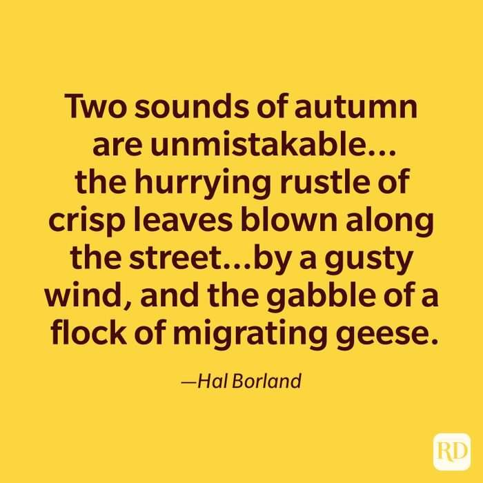 Hal Borland quote