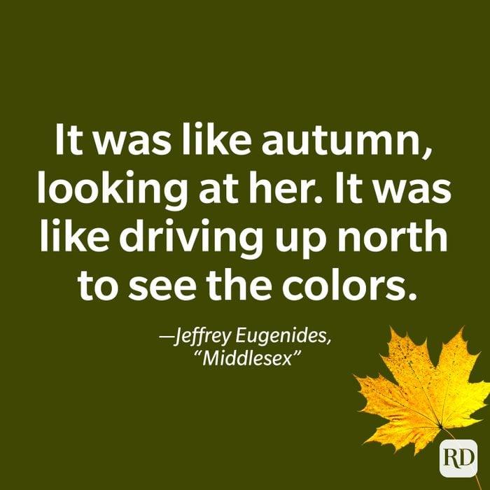Jeffrey Eugenides, Middlesex quote