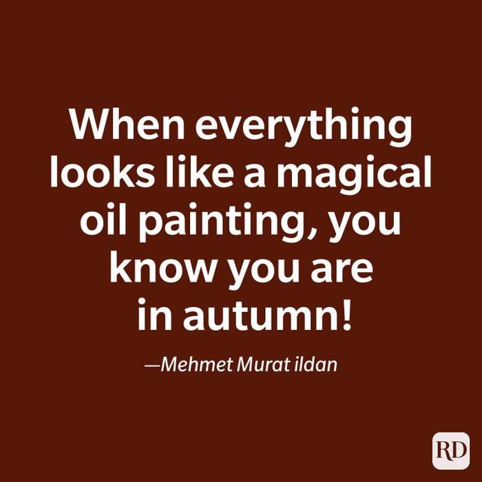 Mehmet Murat ildan quote