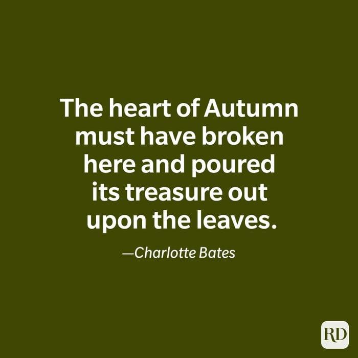 Charlotte Bates quote