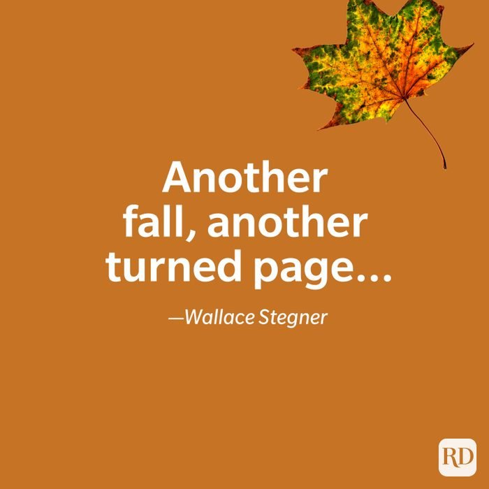 Wallace Stegner quote