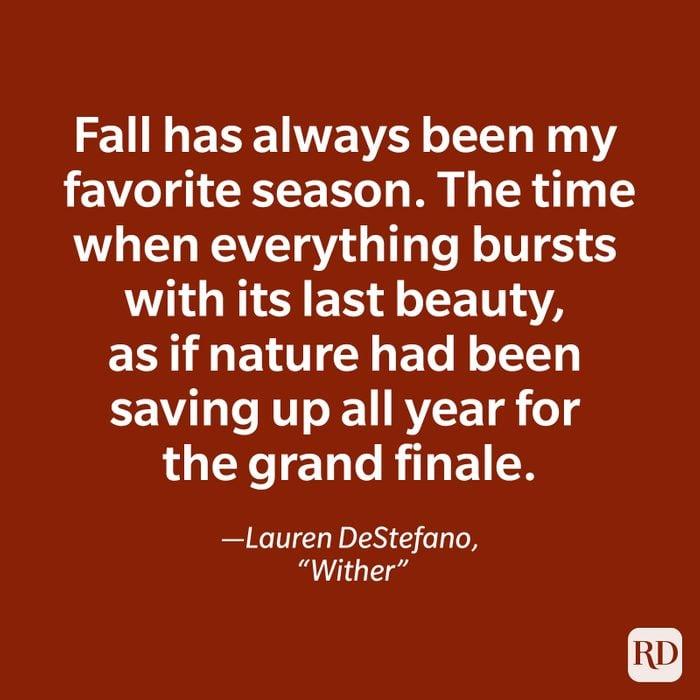 Lauren DeStefano quote
