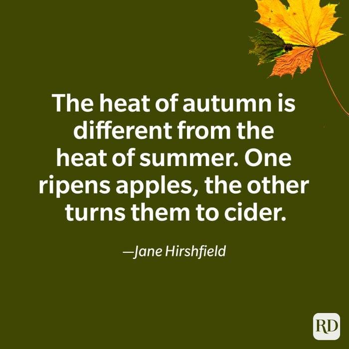 Jane Hirshfield quote