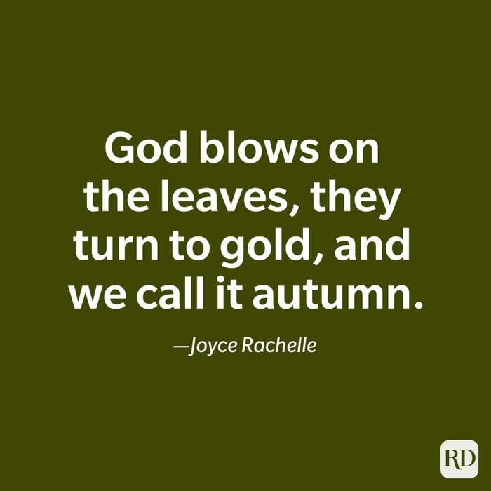 Joyce Rachelle quote
