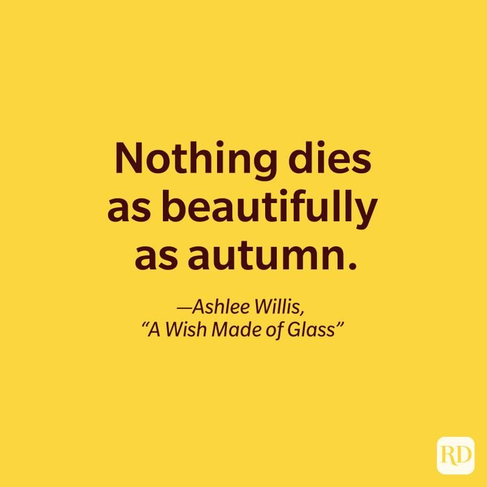 Ashlee Willis, A Wish Made of Glass quote