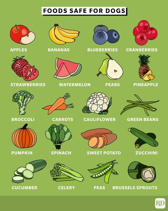 fruits and vegetables safe For dogs to eat