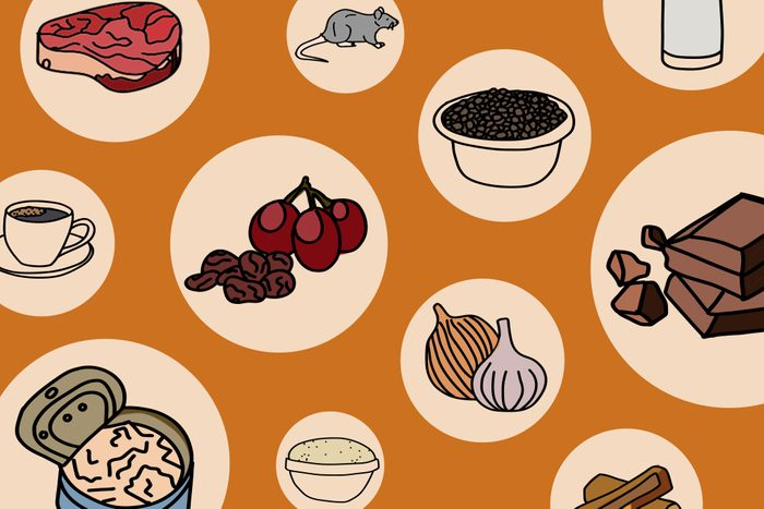 Illustrated foods that are toxic to cats