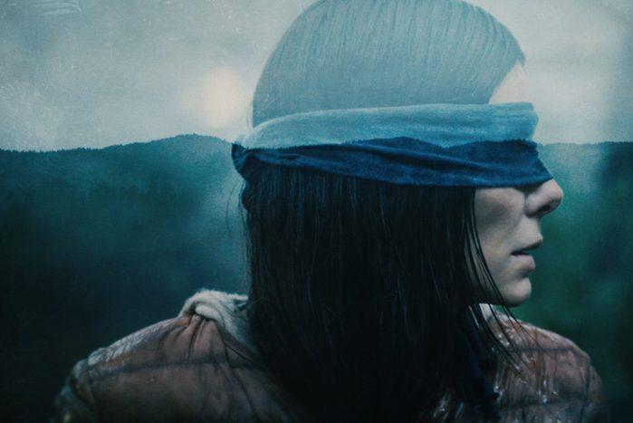 promotional image for Bird Box on netflix