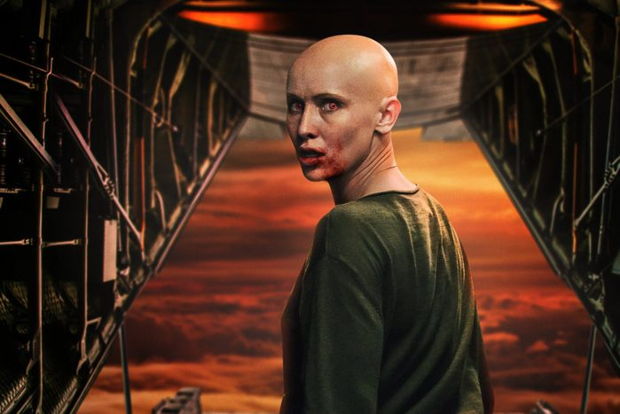 Promotional image for Blood Red Sky on netflix