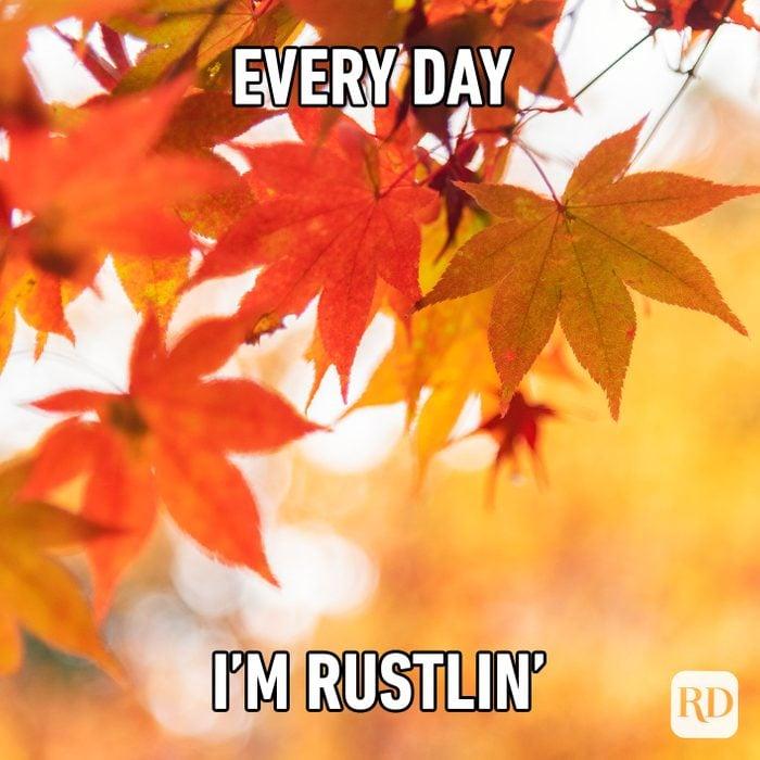 Every Day I'm Rustlin'