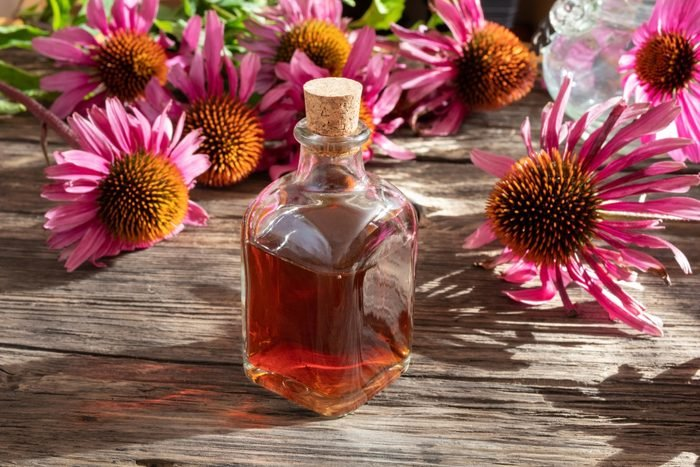 A bottle of herbal tincture with fresh blooming echinacea