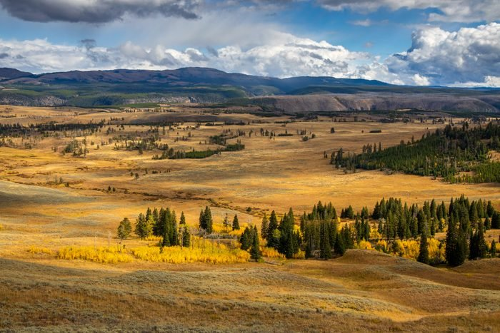 View in Yellowstone National Park
