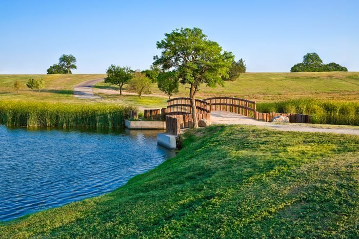 summer footbridge and lake