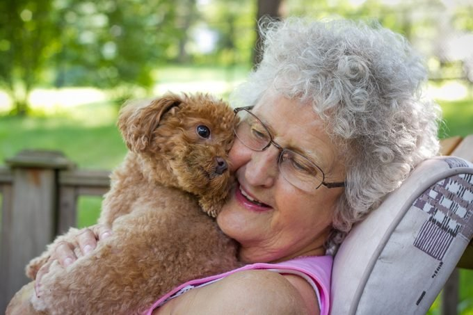 senior woman hugging her toy poodle