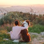 15 Rugged Mountain Dog Breeds That Love Adventures