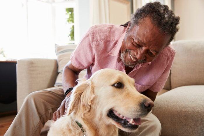Senior Man Sitting On Sofa At Home With Pet Golden Retriever Dog