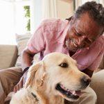 15 Best Dogs for Seniors
