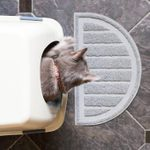 7 Best Self-Cleaning Litter Boxes for Your Home