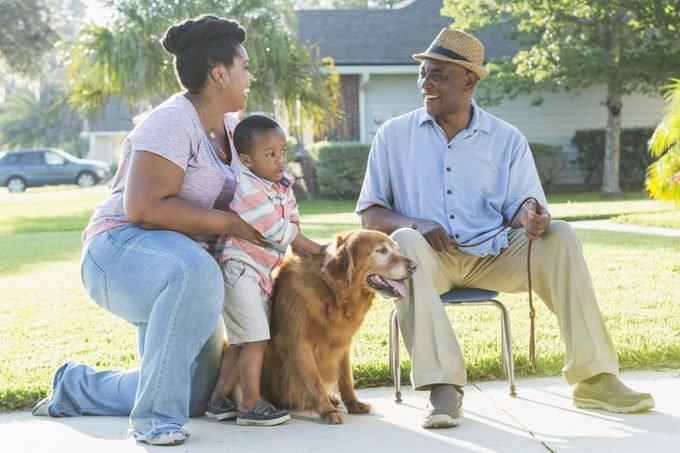golden retriever with senior and grandkids outside