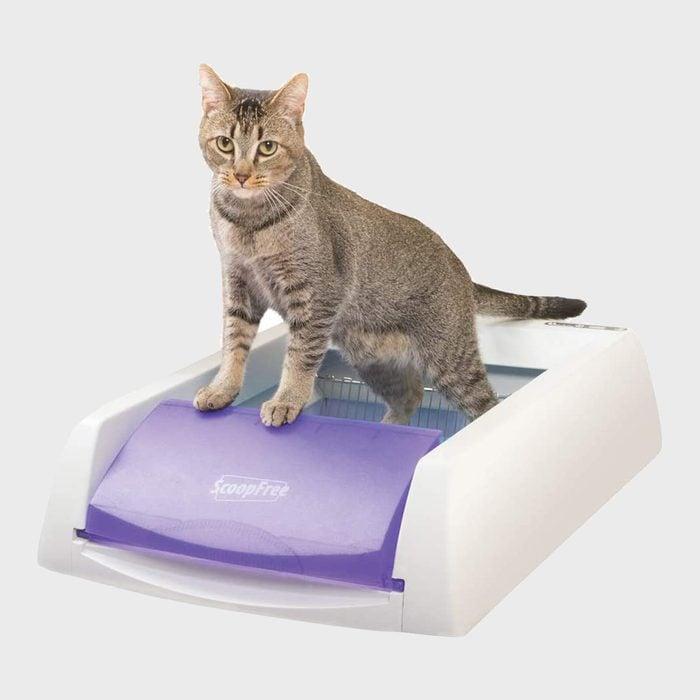 Petsafe Scoopfree Automatic Self Cleaning Cat Litter Box Via Amazon