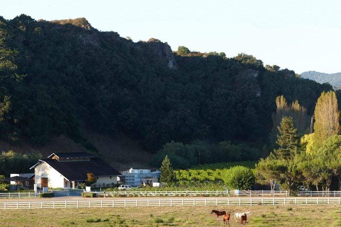 Claiborne & Churchill Winery