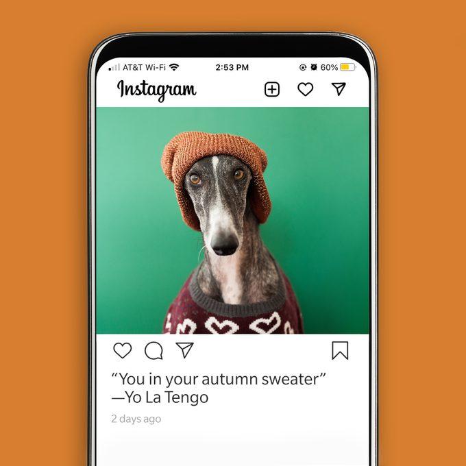 "97. ""You in your autumn sweater""—Yo La Tengo"