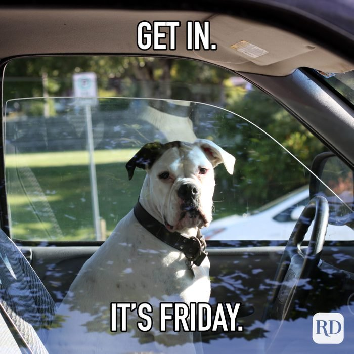 Get In. Its Friday.