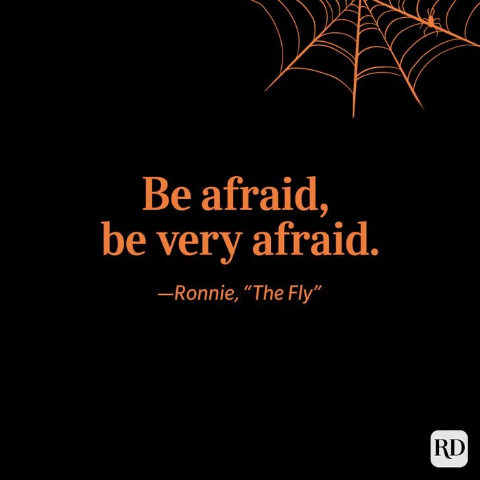 """Ronnie, """"The Fly"""" quote"""