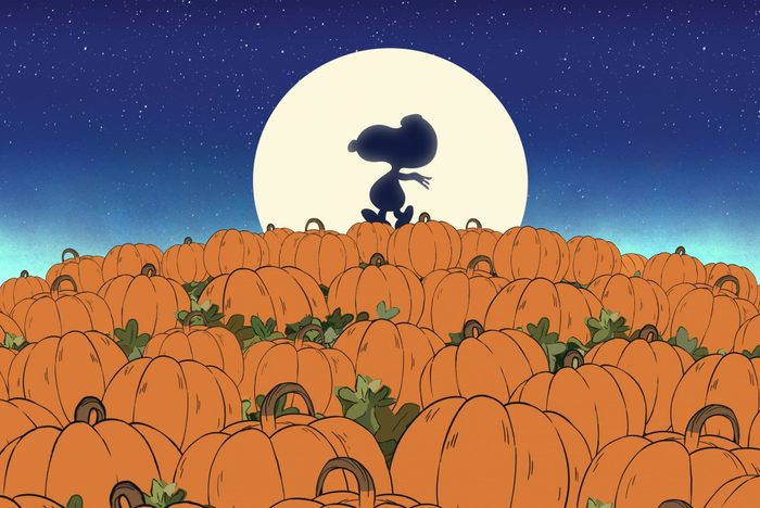 It's The Great Pumpkin, Charlie Brown Apple Tv
