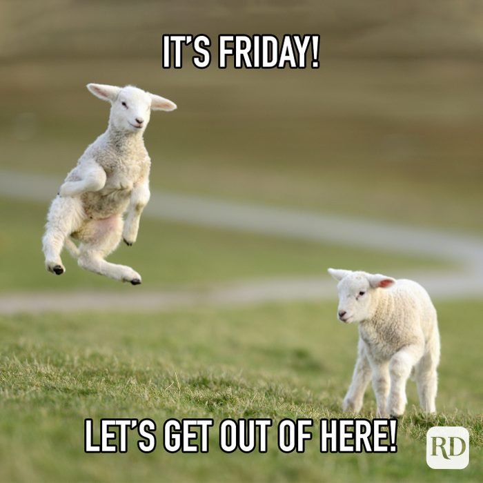 Its Friday! Lets Get Out Of Here!
