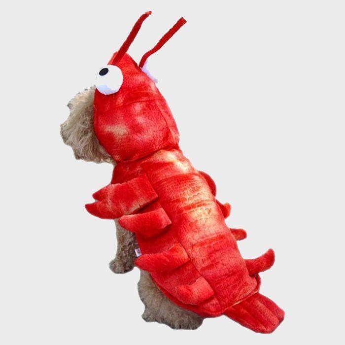 Lobster Dog Halloween Costume