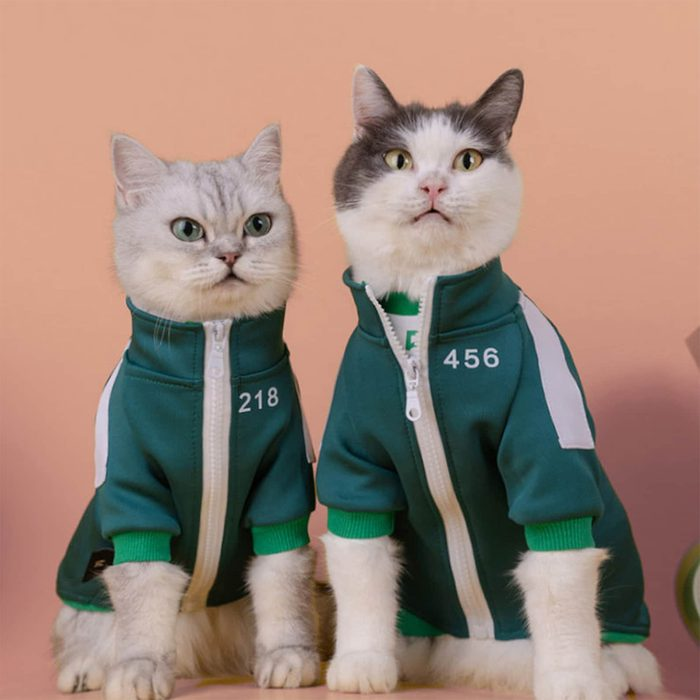Squid Game Cat And Dog Halloween Costume