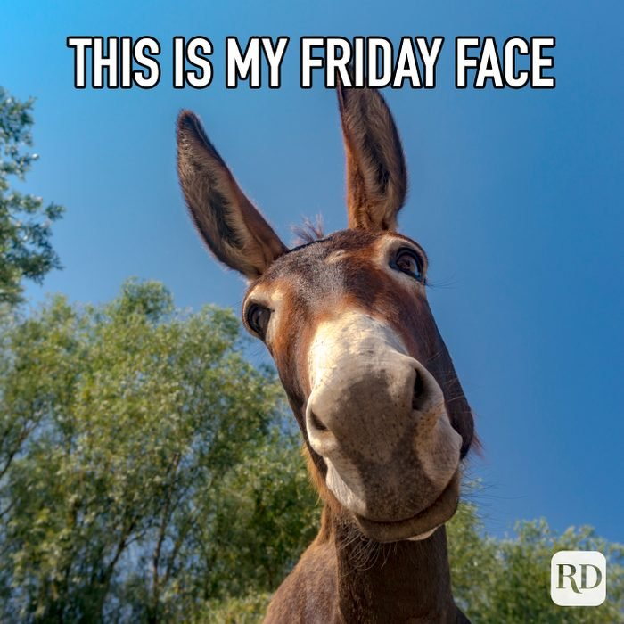 This Is My Friday Face